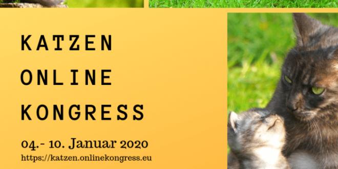 katzen-kongress 2020
