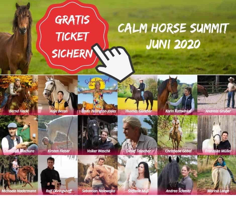 Calm Horse Summit 2020 CHS