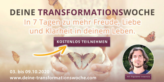 Transformationswoche Equiano Intensio Online-Kongress-Retreat