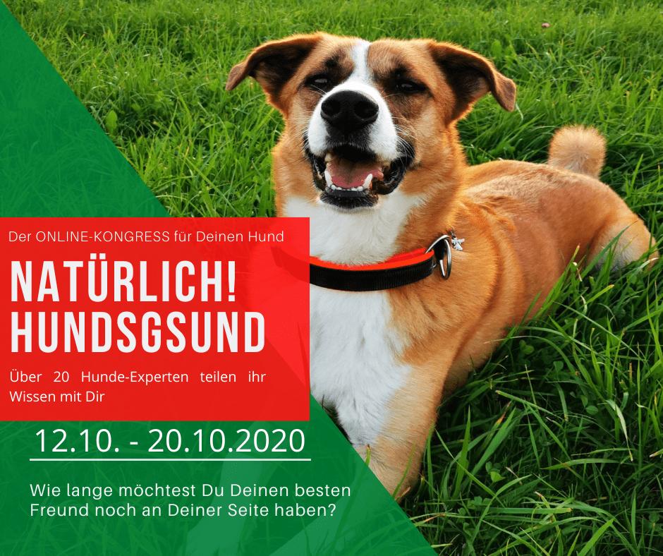 Natürlich Hundsgesund Online-Kongress für Deinen Hund